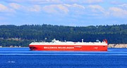 Wallenius Wilhelmsen Prints - Wallenius Wilhelmsen Logistics Tamerlane Ship Print by Tap On Photo