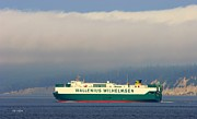 Wallenius Wilhelmsen Prints - Wallenius Wilhelmsen Tristan Cargo Ship Print by Tap On Photo