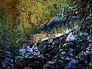 Rivers Tapestries - Textiles Posters - Walleye - On the Rocks Poster by Sue Duda
