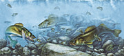 Reef Art - Walleye Reef by JQ Licensing