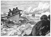 1875 Photos - Walrus Hunt, 1875 by Granger