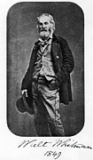 Walt Whitman Metal Prints - Walt Whitman, American Poet Metal Print by Photo Researchers, Inc.