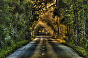 Flagler Prints - Walter Boardman Lane Print by Andrew Armstrong  -  Orange Room Images