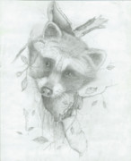 Raccoon Drawings - Wandering Eyes by Michael Warren