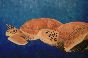 Green Sea Turtle Painting Framed Prints - Wandering Framed Print by Nick Flavin