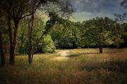 Wandering Path I Print by Tamyra Ayles