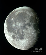 Waning Gibbous Moon Posters - Waning Gibbous Moon Poster by Science Source