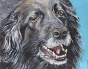 Collie Painting Framed Prints - Wanna Play Wanna Play Framed Print by Helen Shideler