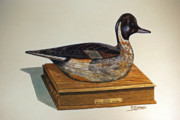 Drake Paintings - Ward Pintail decoy by Raymond Edmonds
