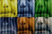 Hommage Prints - Warhol meets Vasarely II - Pig Brother Print by Nafets Nuarb