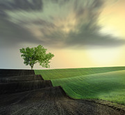 Land Digital Art Originals - Warm blanket of nature III by Caras Ionut