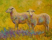 Sheep Posters - Warm Glow - Sheep Pair Poster by Marion Rose