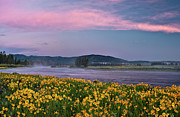 Leland Howard Prints - Warm River Spring Sunrise Print by Leland Howard