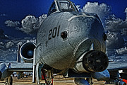 War Bird Framed Prints - WartHog Framed Print by Travis Burgess