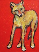 Coyote Art Paintings - Wary Coyote by Carol Suzanne Niebuhr