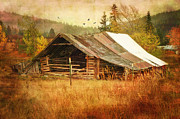 Old Barns Digital Art Acrylic Prints - Was Once a Dream Acrylic Print by Mary Timman