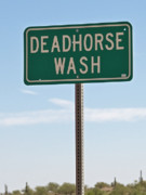 Dry Creek Photos - Washing a Dead Horse by Steven Love