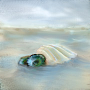 Sea Shell Digital Art Posters - Washing Away Poster by Betty LaRue