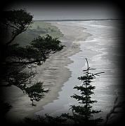 Beach Photograph Photos - Washington Coast by Mg Rhoades