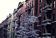 New York City Fire Escapes Posters - Washington Heights Snow Day 2 Poster by Sarah Loft