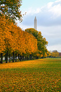 Washington Prints Prints - Washington In the Fall Print by Steven Ainsworth