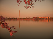 Standing Water Prints - Washington Monument Print by Adettara Photography