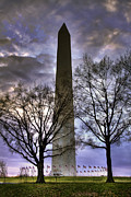 Joe Paniccia - Washington Monument