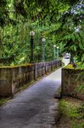 Lamp Posts Prints - Washington Park Arboretum Print by David Patterson