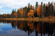 Prince Albert National Park Photos - Waskesiu Reflections by Larry Ricker