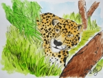 Jaguars Painting Prints - Watchful Print by Anastasia Ely