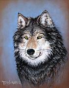Wolf Pastels Framed Prints - Watchful Gaze Framed Print by Tanja Ware