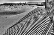 Sand Fences Prints - Watching Shadows BW Print by JC Findley