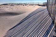 Beach Fence Metal Prints - Watching Shadows Metal Print by JC Findley