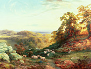 Cole Posters - Watching the Flock Poster by George Vicat Cole