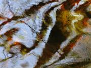 Caratunk Wildlife Refuge Posters - Water Abstract 25 Poster by Joanne Baldaia - Printscapes
