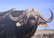Tanzania Paintings - Water buffalo-lunch by Neil Walker