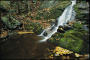 Woodland Scenes Posters - Water Cascading Over Moss-covered Rocks Poster by Medford Taylor
