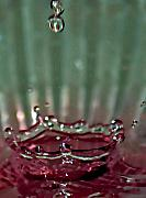 Green Burgandy Posters - Water Drop Crown Poster by Cherie Duran