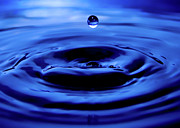 Water Drop Print by Eric Ferrar