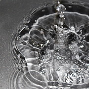 Fine_art Art - Water Drop In Gray by Christy Patino