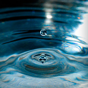 Nikon D80 Prints - Water Drop in Time Print by Sonja Quintero