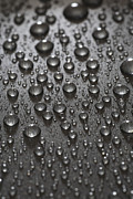 Grey Prints - Water Drops Print by Frank Tschakert