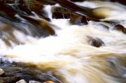 Adirondacks Digital Art Posters - Water Flowing Poster by Amanda Kiplinger
