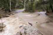 Floods Photos - Water Flowing In The North Fork by Rich Reid