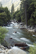 Kings Canyon National Park Posters - Water Flowing In The South Fork Kings Poster by Rich Reid