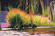 Representational Landscape Prints - Water Garden Landscape 3 Print by Melody Cleary