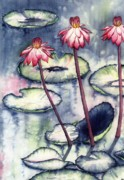 Catherine Wilson - Water Lillies