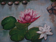 Indrani Moitra Framed Prints - Water Lily Framed Print by Indrani Moitra