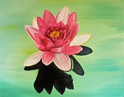 Water Lily Print by Laura Evans
