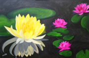 Lilly Pond Paintings - Water Lily Pond  by Una  Miller